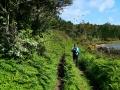 Trail-P1000755