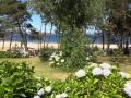 Praia do Lago 02