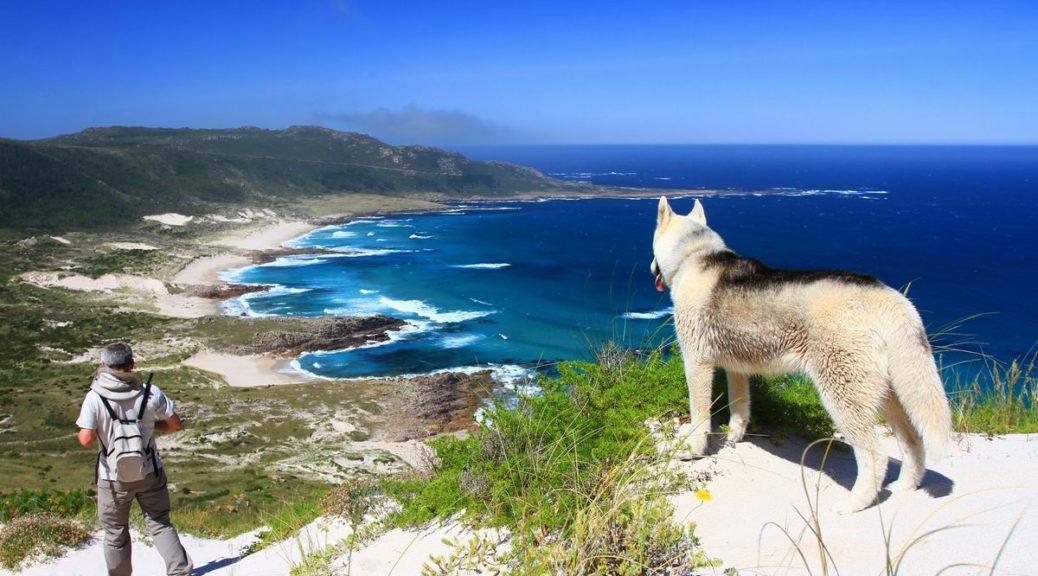 O Camiño dos Faros es una ruta de senderismo de 200 kilómetros que une Malpica con Finisterre por el borde del mar