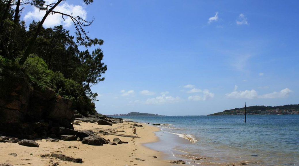 Playa-de-Area-Grande