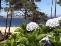 Praia do Lago 03