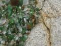Playa de los Cristales